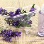 Stress und Allergien
